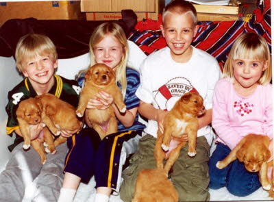 Kids and Toller puppies